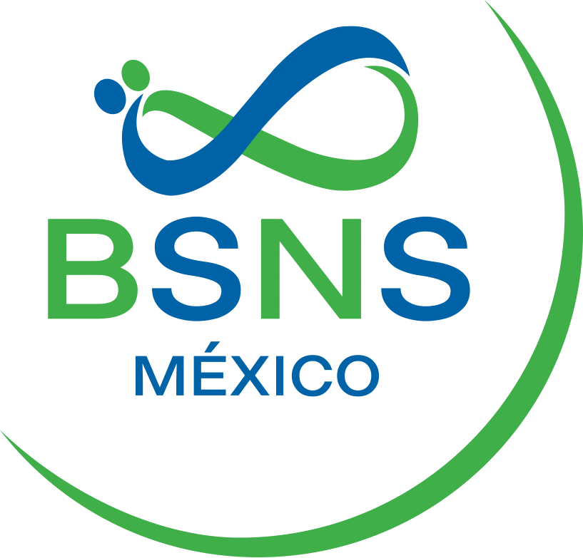 logo BSNS sin fondo
